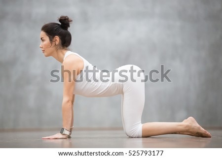 "Beautiful young woman with tattoo on her foot meaning ""Wild cat"" working out against grey wall, doing yoga or pilates exercise. Cow, Bitilasana, asana paired with Cat Pose on the exhale. Full length"
