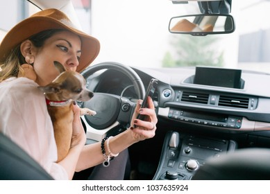 Beautiful young woman using her mobile phone in the car, With chihuhua dog