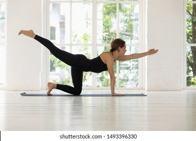 Beautiful young woman wearing black sportswear practicing yoga, standing in Bird dog pose, Donkey, Kick exercise, attractive sporty girl working out at home or in yoga studio with big window