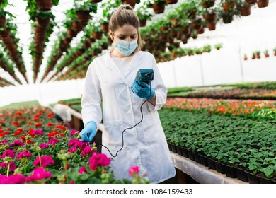 Beautiful young woman working at plant nursery and holding soil ph meter.