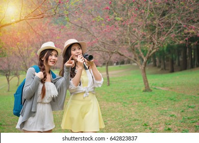 beautiful young women holding travel camera and pointing blooming sakura sharing with friend during spring travel in japan sightseeing cherry blossom park.