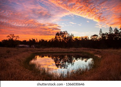 Beautiful,coloured,sunset,reflected on dam surface. Scenic old wooden, slabbed hut in background. Sedgefield near Singleton ,Hunter Valley, N.S.W. Australia.