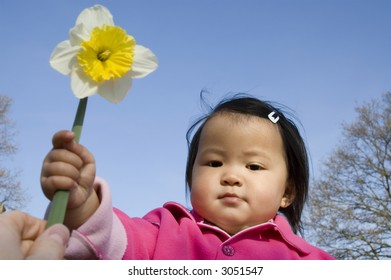 beautifull asian girl holding a daffodil (narcissus) flower
