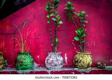 a beautifull colourfull pot at jogja yogyakarta indonesia