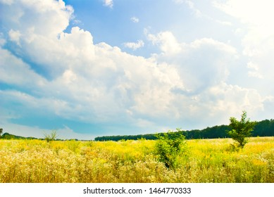 beautifull landscape with sky, clouds and meadow