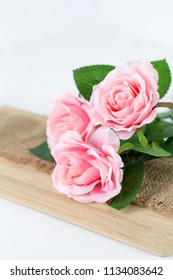 beautifull pink roses on white background
