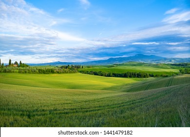 Beautifully illuminated landscape of Tuscany . green hills