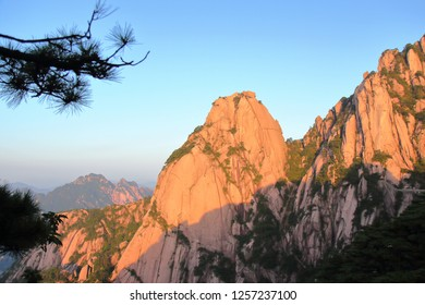 Beautifully shaped rocks and pine trees in Huangshan, Huangshan  City, Anhui Province, China.