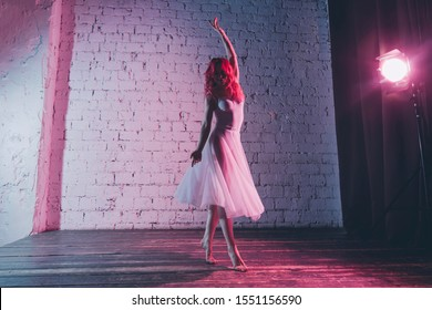 Beautuful ballerina with a perfect body is dancing in the photo studio. Neon color, copy space.