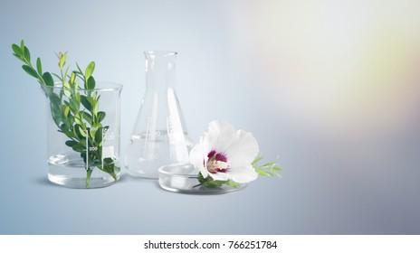 Beauty, alternative, aroma.