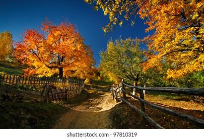 The beauty of autumn season