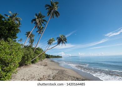 Beauty beach with palm trees and calm sea at a sunny day with blue sky