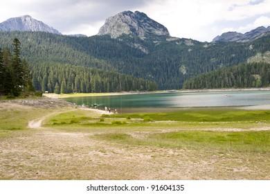 Beauty big Crno lake in Durmitor National UNESCO park - Montenegro.