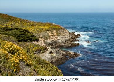 The beauty of California's Big Sur coast is seen as waves break on Kasler Point.