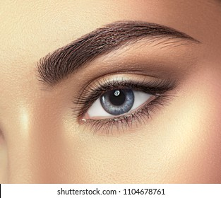 Beauty Brunette Woman blue Eye with Perfect Makeup. Beautiful Professional Make-up. Perfect eyebrows shaping, eyes and eyelashes. Skin care, foundation, contouring. Beauty Girl's Face make up.