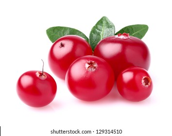 Beauty cranberry with leaves