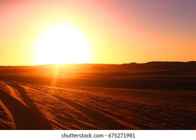beauty desert