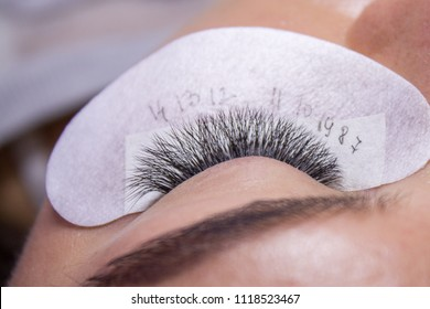 Beauty and fashion concept - End of Eyelash Extension Procedure. Woman Eye with Long false Eyelashes. Close up macro shot