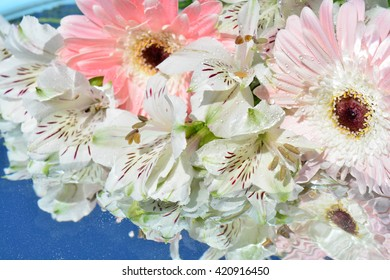 beauty flowers with reflection in pure water