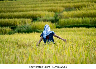 Beauty Girl Outdoors enjoying nature, Woman relaxing in rice field. nature, summer holidays, vacation and people concept