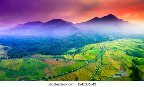 beauty green and yellow rice fields, river indonesia with beauty place bengkulu on mountain range sumatera indonesia