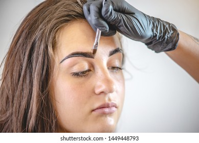 Beauty master brow painter paints eyebrows by coloring them with henna. Woman makes a make-up working in black gloves in a beauty salon. Concept brow architecture
