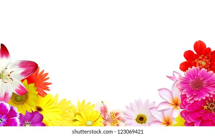 Beauty mix flowers frame isolated white background