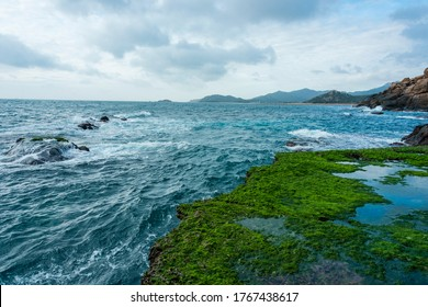 beauty moss area and small island on sunshine at the beach with magic light and violently wave of sea