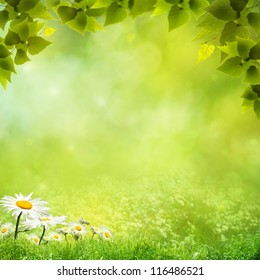Beauty natural backgrounds for your design