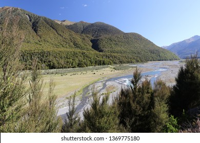 beauty of nature on northern island of new zealand