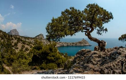 Beauty nature sea landscape Crimea ( New World, Noviy Svet, Black sea), horizontal panorama photo
