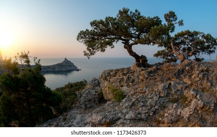 Beauty nature sea landscape Crimea ( New World, Noviy Svet, Black sea), horizontal panorama photo