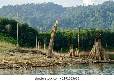 Beauty in nature surrounding tropical rainforest landscape of Royal Belum State Park located in Perak, Malaysia
