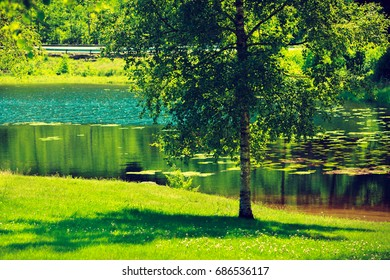 Beauty of nature, traveling concept. Pond lake in green park during spring weather.