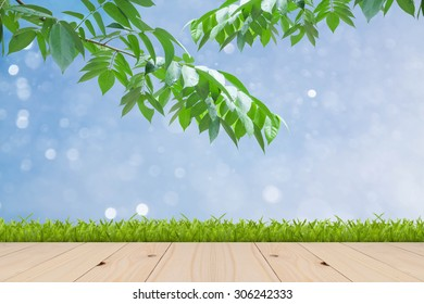 beauty peaceful sky with green leaf as background