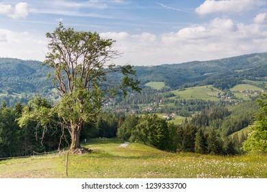 Beauty polish mountains - Beskidy.