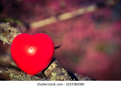 Beauty red heart of love in valentine day in  february,romantic month,romance and couple concept.