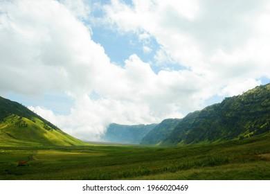 The beauty of the savanna on Mount Bromo.