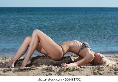 beauty sexy woman on beach in bikini