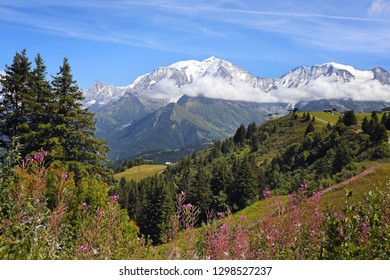 Beauty of summer mountain landscape. French Alps, view of Mont Blanc