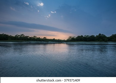 Beauty of Sundarbans mangroves and tiger reserve in India