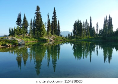 The beauty & tranquility of a summer morning at Mount Rainier National Park. Tall evergreen trees that line an alpine lake & blue sky are reflected on the calm water. Hint of a mountain in background.