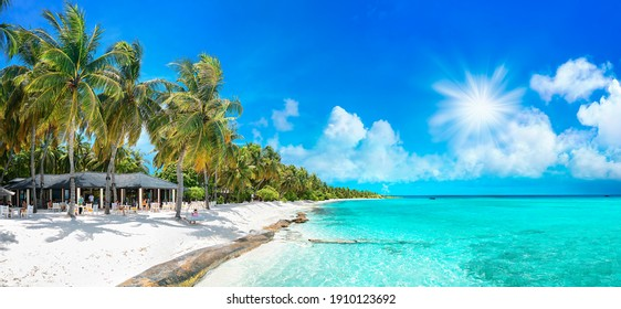 Beauty view of beach line with tall palms tree and ocean. White sand. Bright tropical summer sun and blue sky with light clouds. Wide format.