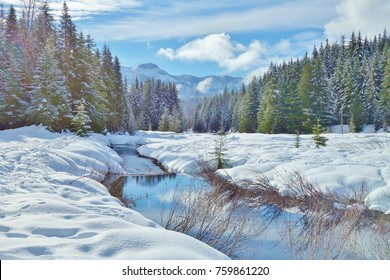 The beauty of Washington state winter in Cascade Mountains is seen with a creek meandering through the frame, freshly fallen snow on ground & trees, mountain background & sky/clouds reflected on water