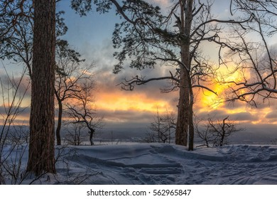 Beauty of winter landscape. Fairy - tail forest under the sunset sky.