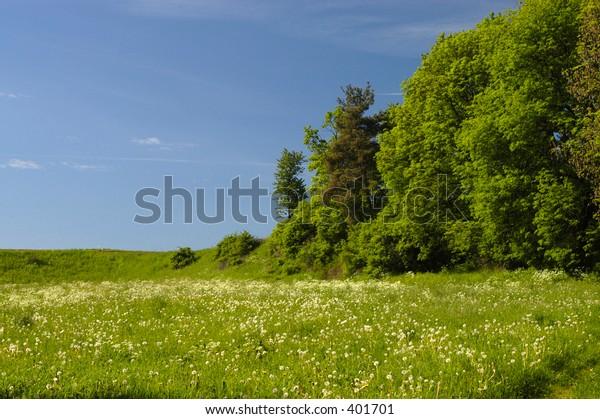 beautyful landscape III