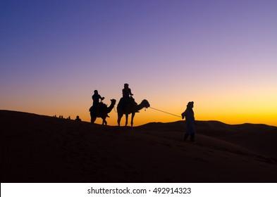Beautyful sunset with caravan on Sahara desert