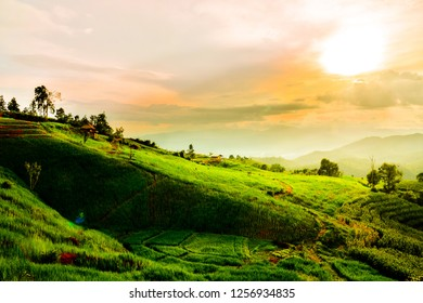 Beautyful sunset at terraced paddy field in Mae Jam village