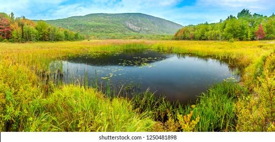 Beaver Dam pond along park loop road in Acadia National Park, Maine