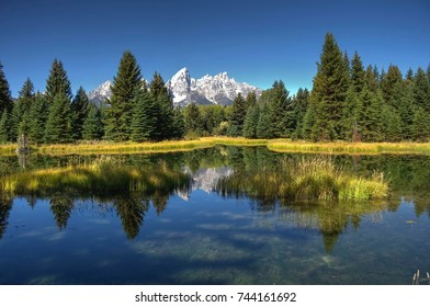 Beaver pond with a view of Tetons